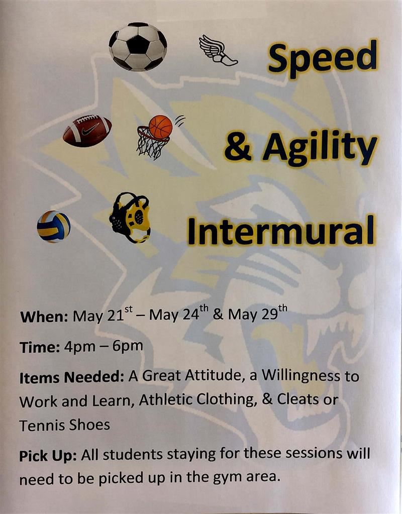 Speed and Agility Intramural