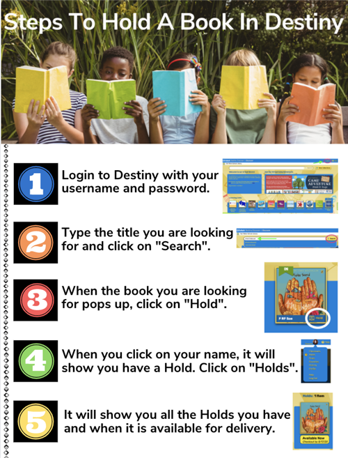 How to Hold a Book in Destiny