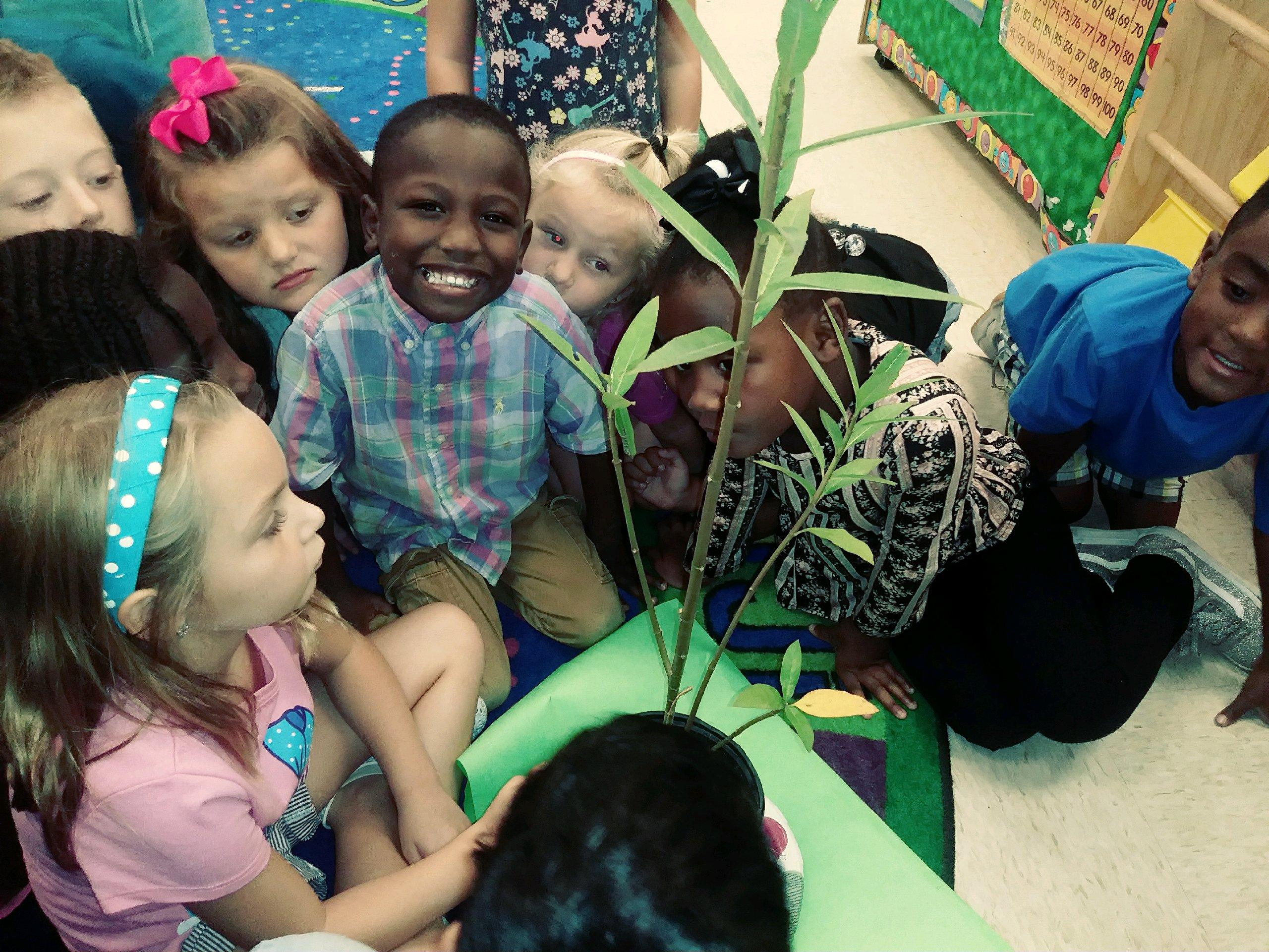Ebenezer Avenue Elementary School Homepage
